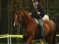Pettra Engeländerin ratsastusjousiammunta klinikka, Pedersöre 2012