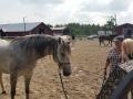 EMAC:n ratsastusjousiammuntakurssi Kokkolassa, Keski-Pohjanmaan Hevostaito Oy